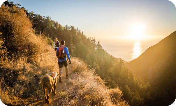 couple with their dog on a hike in the woods